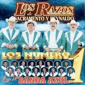 Los Número 1 by Los Razos
