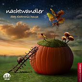 Nachtwandler, Vol. 19 - Deep Electronic House by Various Artists
