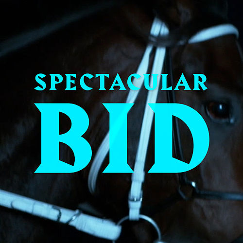 Spectacular Bid by N.O.R.M.A.