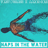 Naps in the Water by Torey D'Shaun