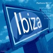 Plethora IBZ 17 by Various