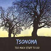 Tso Much Stuff to Do by Tsonoma