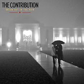 Dream Out in the Rain by The Contribution