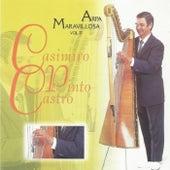 Arpa Maravillosa, Vol. 11 de Casimiro Pinto Castro
