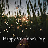 Happy Valentine's Day - Pop by Various Artists