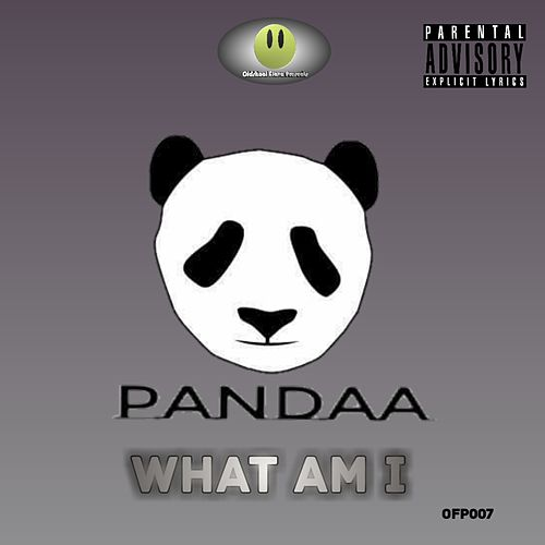 What Am I by Pandaa