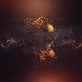 Absortion by Dj Alexey Kapitonowww