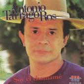 Soy el Chamamé by Antonio Tarrago Ros (1)