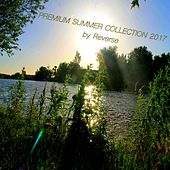 Premium Summer Collection 2017 by Various Artists