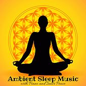 Ambient Sleep Music for Music Therapy, Quite Moments with Piano and Inner Peace by All Night Long