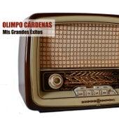 Mis Grandes Éxitos by Olimpo Cardenas
