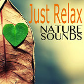 Just Relax with Nature Sounds - Calm Zen Music & Instrumental Lullabies for Newborns by Lullabies for Babies Orchestra