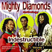 Indestructible, Vol. 1 by The Mighty Diamonds