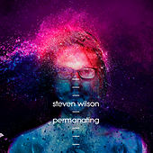 Permanating by Steven Wilson