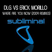 Where Are You Now (2009 Remixes) by Erick Morillo