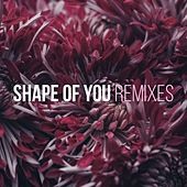 Shape of You (Remixes) by Various Artists