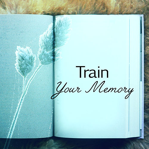 Train Your Memory – Best Classical Music for Study, Stress Relief, Deep Focus, Concentration, Easy Learning by Konzentration Musik Welt