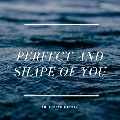Perfect and Shape of You (Instrumental) de Abhineeth Mishra