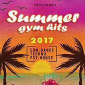 Summer Gym Hits 2017 de Various
