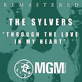 Through The Love In My Heart by The Sylvers