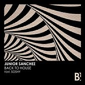 Back To House by Junior Sanchez