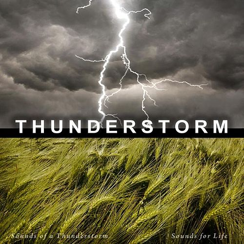 Play & Download Sounds of a Thunderstorm by Sounds for Life | Napster