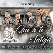 Que Se Te Antoja by Los Buitres De Culiacan Sinaloa