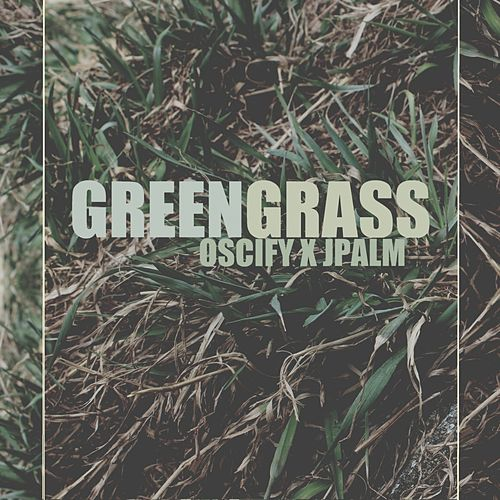 Green Grass by Jpalm