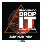 Drop It (Reggaeton Remix) by Eshconinco