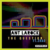 The Question by ANT LaROCK