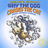 Why the Dog Chases the Cat by David Holt