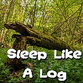 Sleep Like A Log by Relax Meditate Sleep, Nature Sound Series, Rain Sounds Sleep