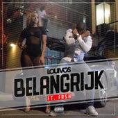 Belangrijk (feat. Frsh) van LouiVos