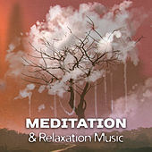 Meditation & Relaxation Music – New Age Buddha Lounge, Stress Free, Spiritual Calmness, Chilled Mind by Meditation Awareness