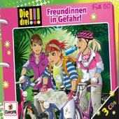 050/Freundinnen in Gefahr von Die Drei !!!