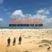 Mesmer Mesmerising de Manu Delago