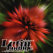 Abstract Latin Lounge (2001) by Various Artists