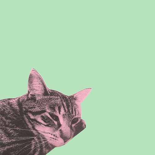 Kitty EP by Jem