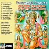 Hare Rama Hare Krishna by Rakesh Yankaran