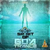 Spirit of Goa Trance V2 by Various Artists