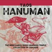 Taos Hanuman by Various Artists