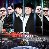 Dos Mundos Differentes by Los Buchones de Culiacan