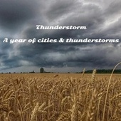 A Year of Cities & Thunderstorms by Thunderstorm