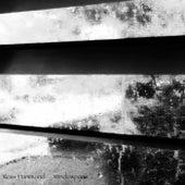 Windowpane by Ross Hammond