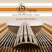 Organy Kościoła Najświętszej Maryi Panny Królowej Polski W Pogórzu von Paweł Seligman