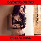 Bachata de Oro Medley: Camino Sin Regreso / Cuando Volveras / Dulce Amor / L'emozione non ha voce / Beso Bachata / Pideme / Mas mujer / Quel Vuelva / Spanish Girl / Bachata Mulata / Tu / Pasitos / Bachata Rosa / Roguerdo / Te Quiero / by Extra Latino