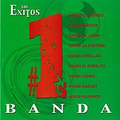 Play & Download Exitos #1: Banda by Various Artists | Napster