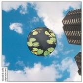 Narrominded Split LP Series #2 by Various Artists