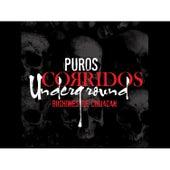Puros Corridos Underground by Los Buchones de Culiacan