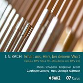 Bach: Cantatas, BWV 126 & 79 and Mass in G Major, BWV 236 by Various Artists